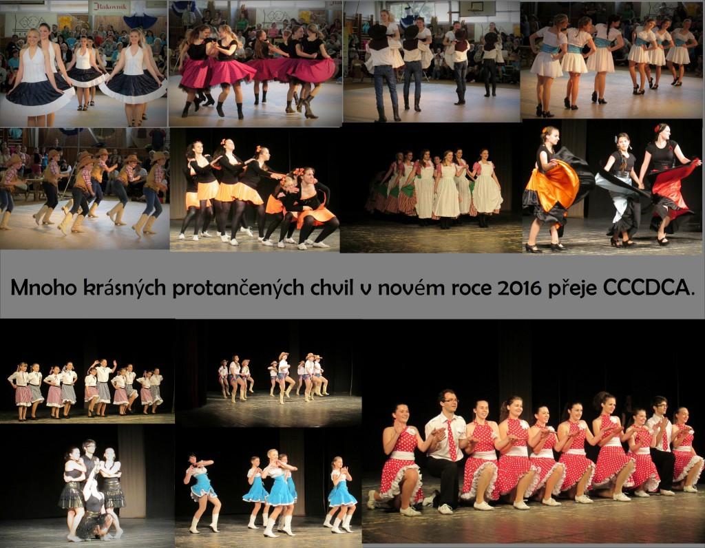 CCCDCA-PF-2016